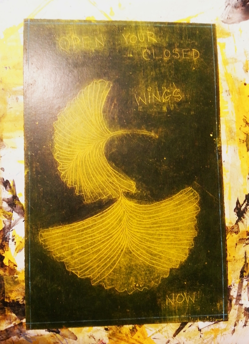 GinkgoWINGS: OPENYOURCLOSEDWINGSNOW 2013 STUDIO SHOT CATHERINE L. JOHNSON; CATHERINE L. JOHNSON;