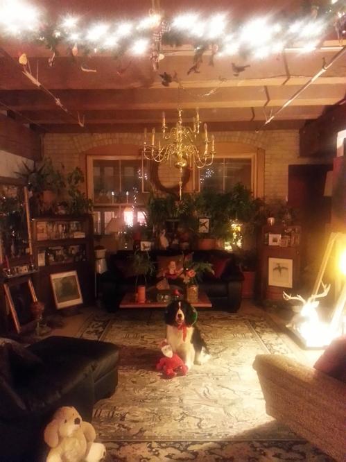 CHRISTMAS 2013 PRINCE ST. LOFT JASPAR OBI; CATHERINE L. JOHNSON;
