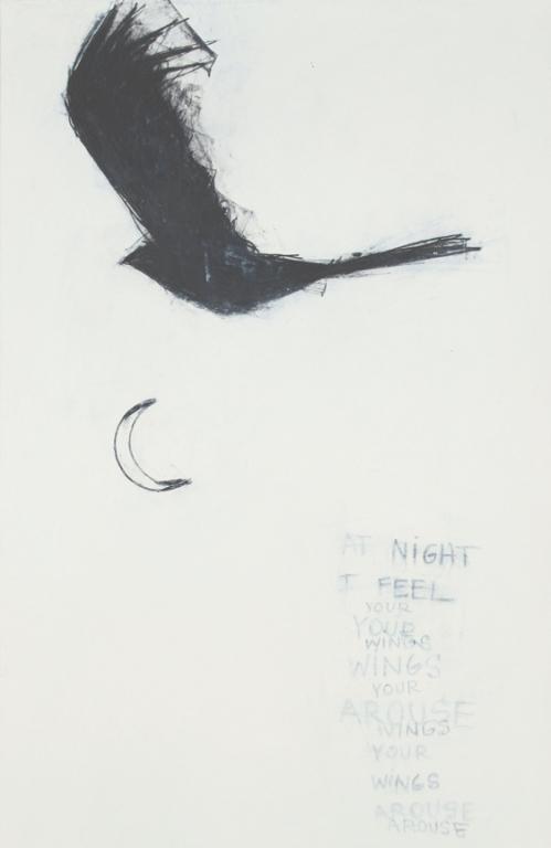 BLACKBIRD: WINGS AROUSE  CATHERINE L. JOHNSON  2010; CATHERINE L. JOHNSON;