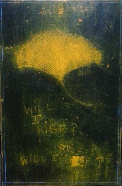 GinkgoWINGS: WILLIRISE_DECEMBER 2013 CATHERINE L. JOHNSON; CATHERINE L. JOHNSON;