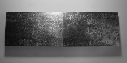 FIRST LIGHT @ NIGHT: LOVEISAGARDENBLOOM 2013 CATHERINE L. JOHNSON; CATHERINE L. JOHNSON;