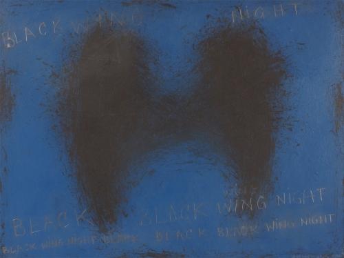 BLACKWINGEDNIGHT CATHERINE L. JOHNSON 2007; CATHERINE L. JOHNSON;