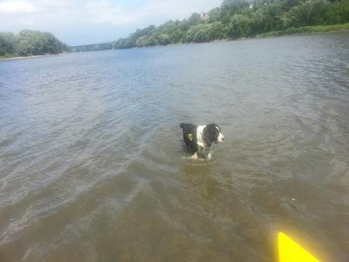 jaspar_kayak_miss-mnrivers_24july2015