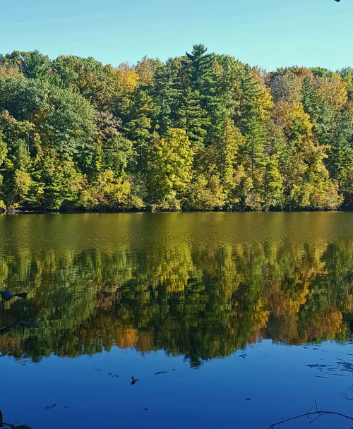 2oct_glen_lake_park_mirror