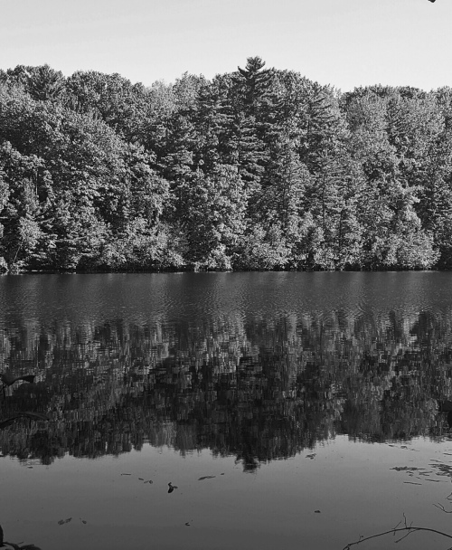 2oct_glen_lake_park_mirror_bw