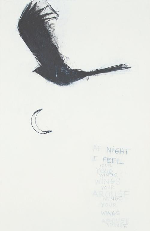 blackbird_wing_-yourwingsarouse_2010_catherineljohnson