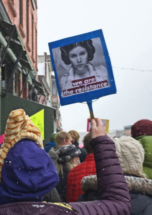 womens_march_telluride_21jan17_mpreyelts